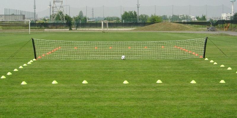 Ball, net and the grass